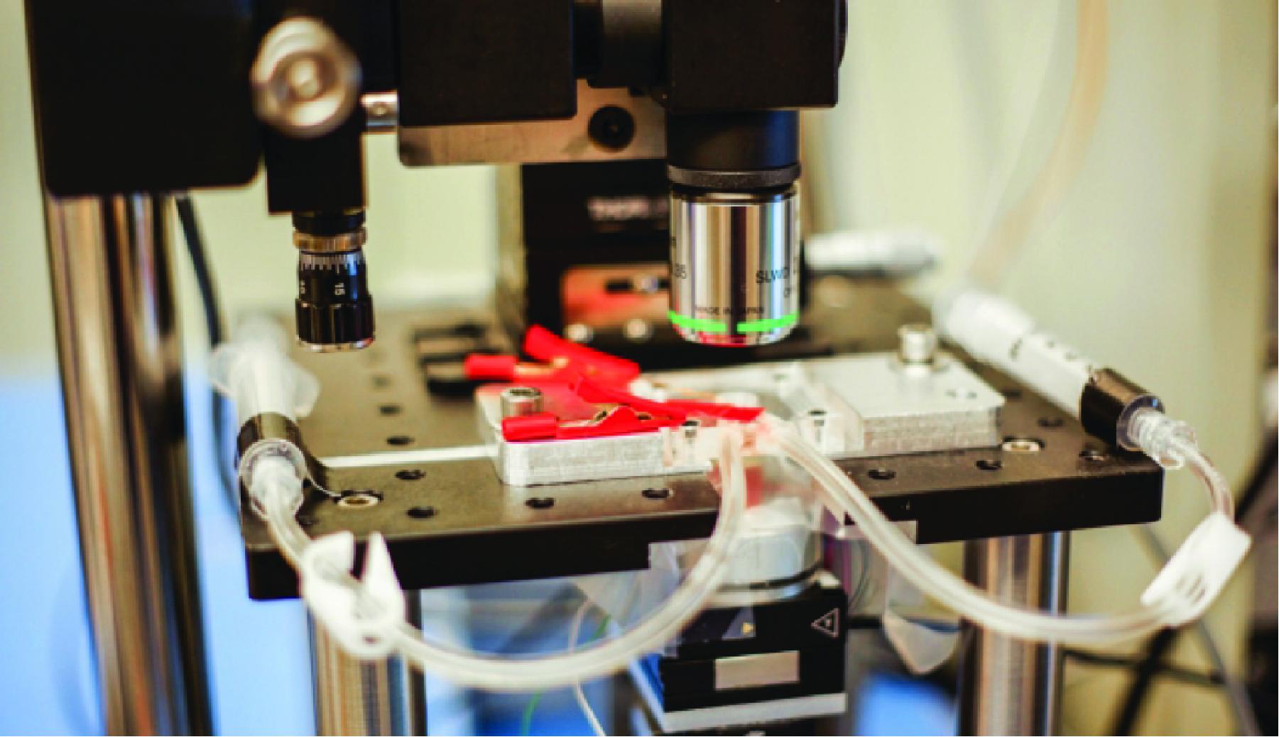 High-speed Atomic Force Microscope